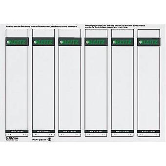 Leitz Lever arch file labels 1686-20-85 39 x 191 mm Paper Grey Permanent 150 pc(s)