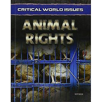 Kritiska frågor: Djurens rättigheter