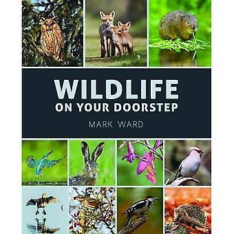 Wildlife op uw deur