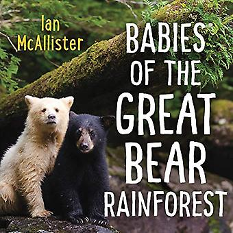 Babies of the Great Bear Rainforest [Board book]