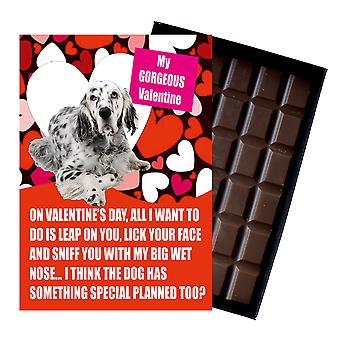 English Setter Gift for Valentines Day Presents For Dog Lovers Boxed Chocolate