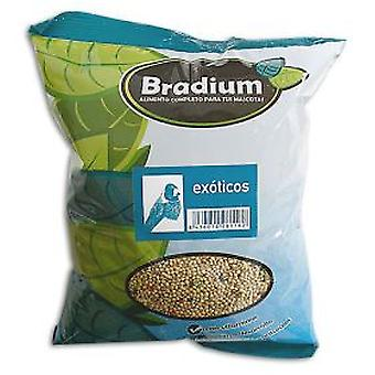 Bradium Exotic Mixture Bradium Parakeet-4Kg (Large) (Birds , Bird Food)