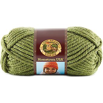 Hometown USA Yarn-Oklahoma City Green