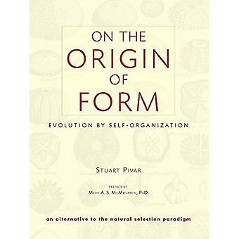 På beskärningen av Form: Evolution av självorganisering