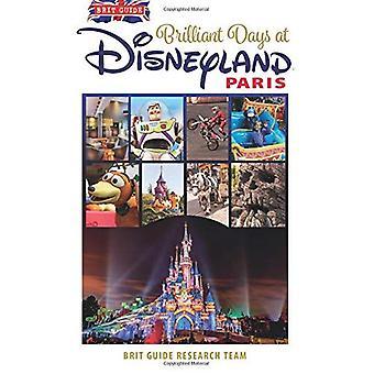 Brilliant Days at Disneyland Paris