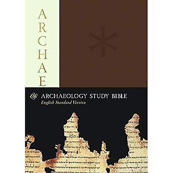 ESV Archeologie studie Bijbel