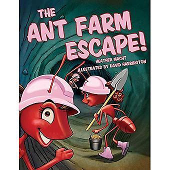 De Ant Farm Escape!