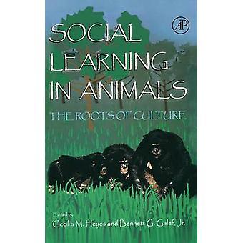 Social inlärning hos djur rötterna av kultur av Heyes & Cecelia M.