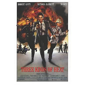 Three Kinds of Heat Movie Poster (11 x 17)