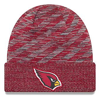 Ny æra NFL bibeskæftigelse 2018 strikket hat - Arizona Cardinals