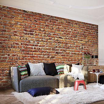 Papel de parede - parede de tijolos
