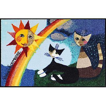 Rosina Wachtmeister dörrmatta Arcobaleno 50 x 75 cm tvättbar smuts matta katt dörrmatta