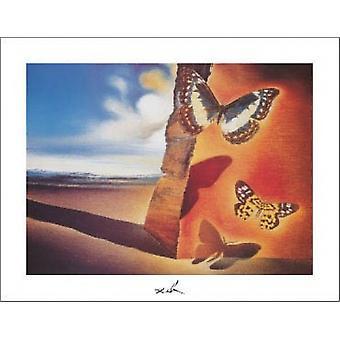 Paysage aux Papillons Poster Print by Salvador Dali (14 x 11)