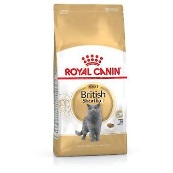 Royal Canin British Shorthair (Chats , Nourriture , Croquettes)