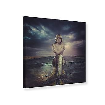 Leinwand drucken Meerjungfrau gestrandet