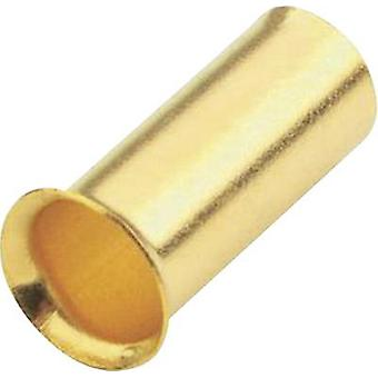 Ferrules 6 mm² Sinuslive gold-plated