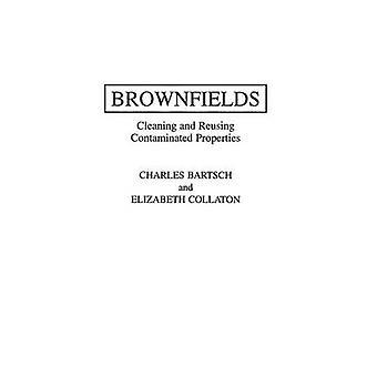 Brownfields schoonmaken en het hergebruik van besmette eigenschappen door Haines & David