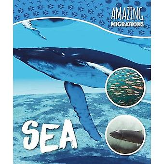 Sea by Harriet Brundle - 9781786372222 Book