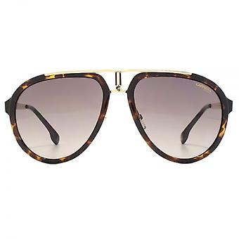 Carrera 1003 Aviator Sunglasses In Havana Gold