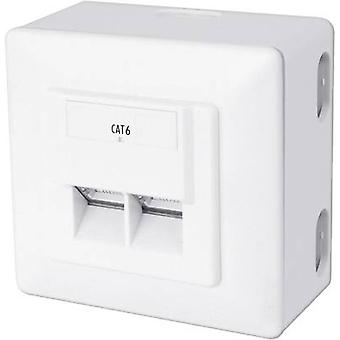 Network outlet Surface-mount CAT 6 2 ports Digitus Professional