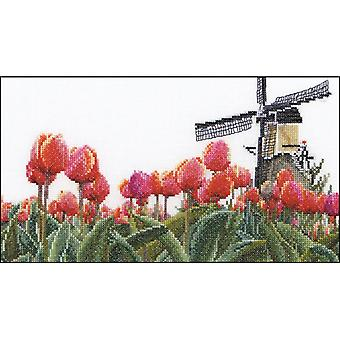 Bulbfield Tulips On Aida Counted Cross Stitch Kit-9.5