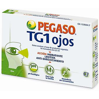 Pegaso Eye Drops Tg1 Eyes 10 Monodoses (Hygiene and health , First Aid Kit , Eyes)