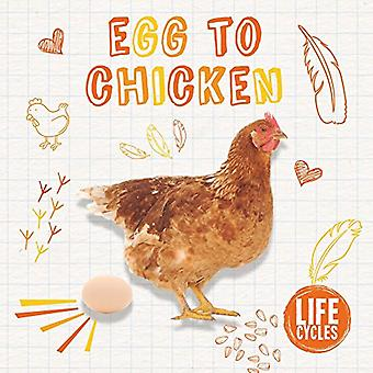 Egg to Chicken (Life Cycles)