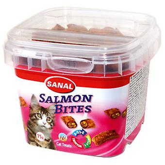 Sanal Bote Sanal Cat Salmon Bites (Cats , Treats , Biscuits)