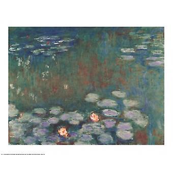 Plakatutskrift når vannliljer av Claude Monet (30 x 24)