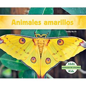 Animales Amarillos (Yellow Animals) (Animales de Colores (Animal Colors))