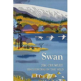 Swan (Encounters in the Wild)
