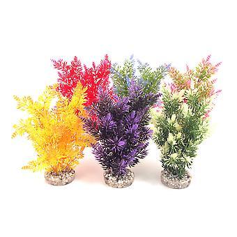 Sydeco farvet planter Fiesta Bush 22cm (pakke med 6)