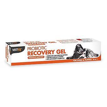 Dyrlægen Iq probiotiske Recovery Gel For hunde & hvalpe 30ml