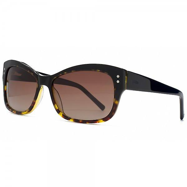 Storm Black Flared Sunglasses In Black Havana