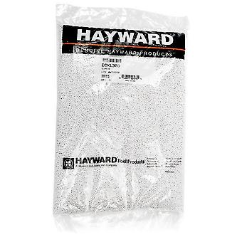 Hayward ECX1308 Schmear Pellets for Repairs - White