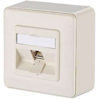 Metz Connect Network outlet Surface-mount CAT 6 1 port Pearl white