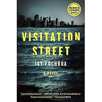 Visitatie Street (Dennis Lehane)
