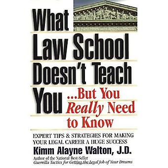 What Law School Doesn't Teach You...But You Really Need to Know: Every Tips & Strategies for Making Your Legal Career a Huge Success