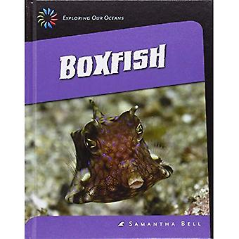 Boxfish (21st Century Skills Library: Exploring Our Oceans)