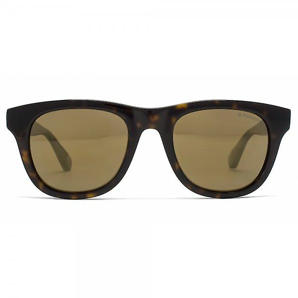 Polaroid Plus Wayfarer Sunglasses In Dark Havana Brown Polarised