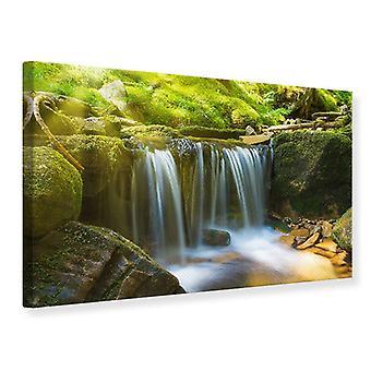 Canvas Print schoonheid van vallende Water