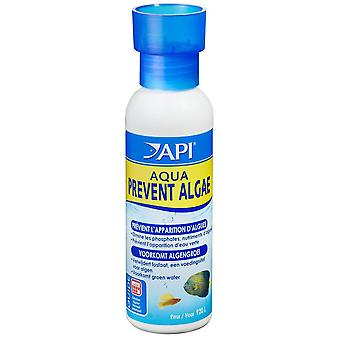 API Api Aqua Prevent Algae 118Ml (Fish , Maintenance , Water Maintenance)