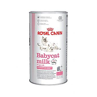 Royal Canin Babycat Kitten Cat Food  Milk