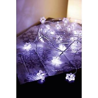 Polarlite 711776 Holiday lights (motif) Stars Inside mains-powered 20 LED Warm white Illuminated length: 5.7 m