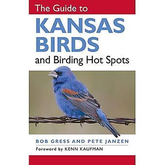 The Guide to Kansas Vögel und Birding Hotspots