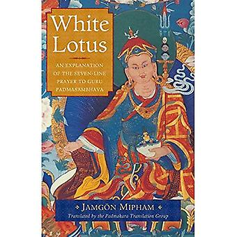 White Lotus: An Explanation of the Seven-Line Prayer to Guru Padmasambhava