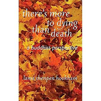 There Is More to Dying Than Death: a Buddhist Perspective