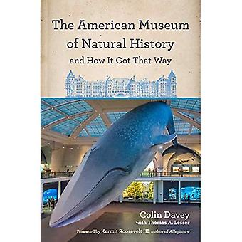 Das American Museum of Natural History und wie es so kam