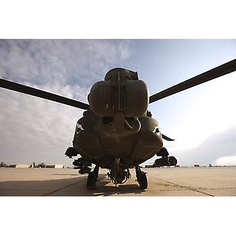Ein AH - 64D Apache Longbow Kampfhubschrauber sitzt auf der Flightline am Camp Speicher Poster Print