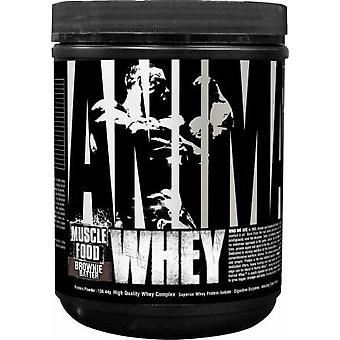 Universal Nutrition Animal Whey Red Velvet 131 gr (Sport , Muscle mass , Proteins)